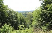"""La Roche aux Faucons - Point de vue exceptionnel de  """"La maison dans le bois"""" - Photo: M.Defour ©"""