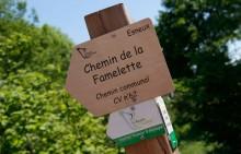 La Roche aux Faucons - vers la forêt de Nomont-Famelette - Photo: M.Defour ©