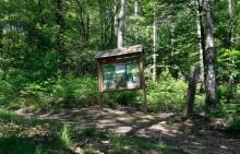La Roche aux Faucons - Panneau dydactique à l'entrée de la forêt - Photo: M.Defour ©